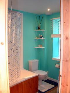Bathroom with shower and bath.