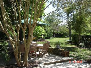 Eating al-fresco in the dappled shade of the pretty crepe myrtille trees