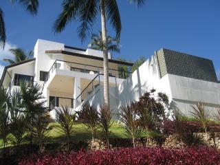 wild palms, Koh Samui