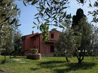 """Villa """"Gli Olivi""""- Vinci"""