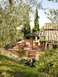 Terrace from the olive grove