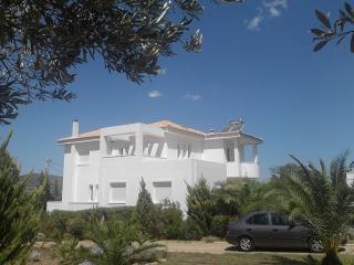 Athens villa, coast area, Villa Laurel, Kalyvia Thorikou