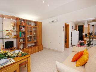 Vanessa Apartment Venezia