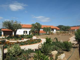 Quinta do Feonix near Tomar, Martinchel