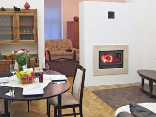 Fireplace Holidays, central, spacious, comfy, WiFi, real fireplace, easy access!