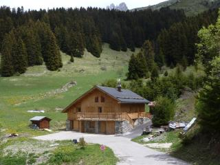 "Superbe chalet ""Chalet Cretet"" in Meribel Mottaret"