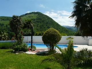 Garden with view of surrounding hills