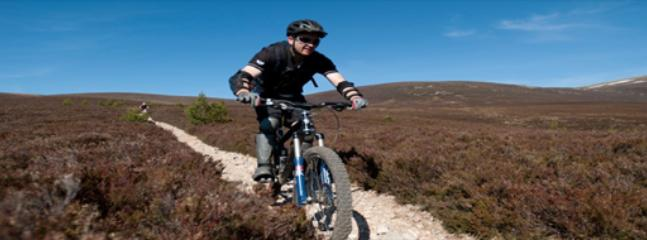 mountain biking routes throughout area