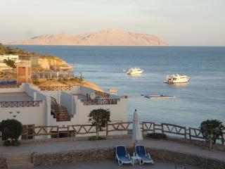 Sharks Bay Oasis, Sharm el Sheik