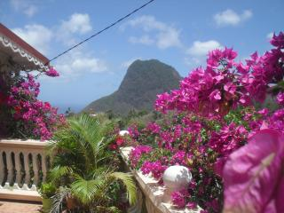 View from Patio area with Gros Piton in the back ground