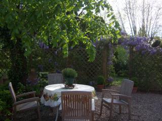 A shady area of the garden