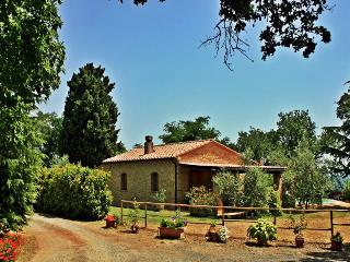 Adorable cottage in the peacful Tuscan countryside private pool pet friendly