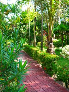 Pathway leading to the Villa