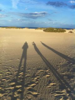 Long shadows on the dunes, wonderful beaches. This is the famous dunes