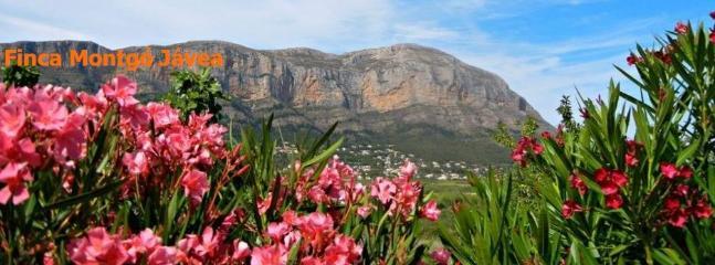 Montgó Mountain - our spectacular backdrop at Finca Montgó Jávea