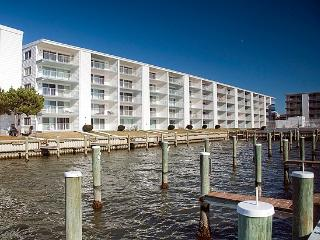 Thunder Island 122C - Waterfront Near Convention Center!
