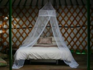 Oaks yurt interior. A full size double and 2 full size singles for a comfortable nights sleep.