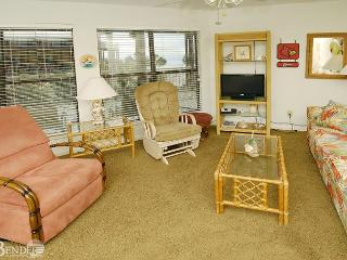Enjoy your View of Palms Trees ~ Bender Vacation Rentals