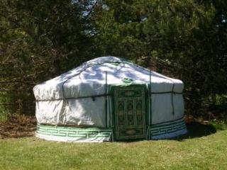 Luxury mongolian Yurt and pool