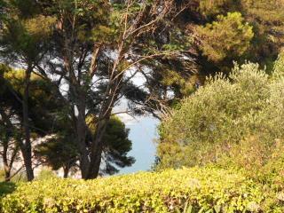 Riviera, casa con giardino affacciata sul blu !, Diano Marina