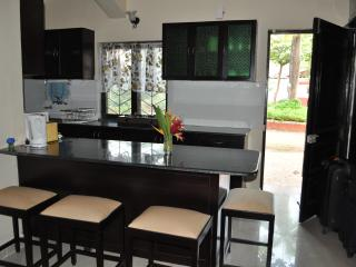Open kitchen