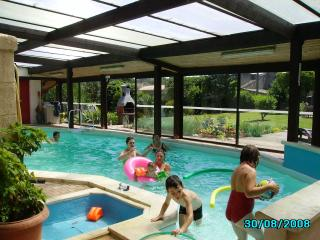 Maison Papillon private pool and games room, Niort