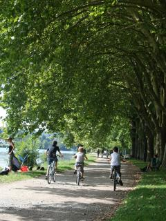 Lovely bicycle rides and walks by the Allier river, Vichy
