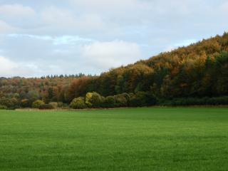Beautiful views surrounding Rubens Barn