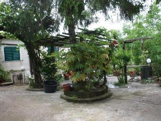 Casa in campagna con annesso frutteto, Velletri