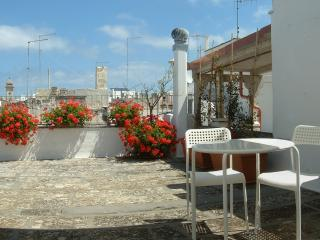 casa Red Flowers con terrazza