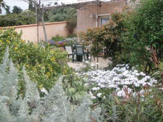 terrasse entourée de fleurs