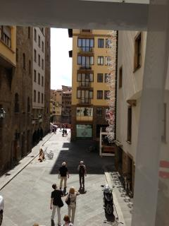 Where is Ponte Vecchio? it is camouflaged, it seem you see houses but...
