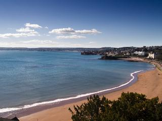 Astor House - one bed (5), Torquay