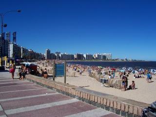 Lovely Studio in Montevideo best location! (82)