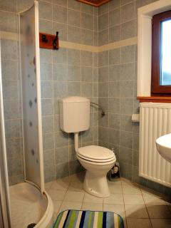 Apartm bathroom with toilette 1