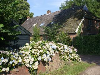 'Under the Oaks' farmhouse - the real Netherlands!