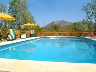 Fabulous large private heated swimming pool