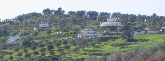 Centre of the photo, our villa on the hillside and olive groves