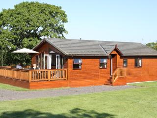 Saxon Lodge, large modern luxury lodge Shaftesbury