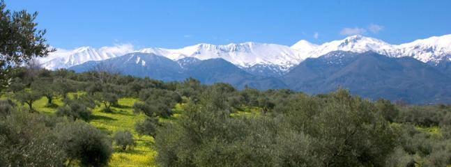 Views to the White Mountains