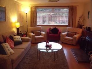 The main lounge with seating for six, log fire, TV, DVD and CD/i-pod player
