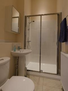 Springbank Top Apartment Shower Room