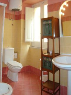 The second bathroom with shower