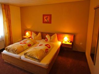 Vacation Apartment in Zwiesel - 215 sqft, balcony, sauna, use of fitness center included (# 1158)