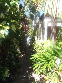 Garden walk way to beach