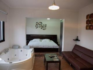 Executive studio middle of everything hot tub, AC, Medellin