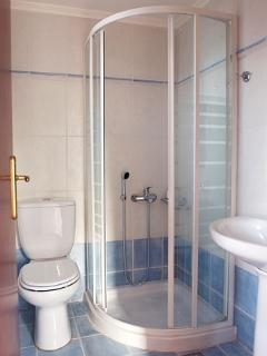 En-suite bathroom with shower cabin