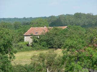 The house nestling in the countryside