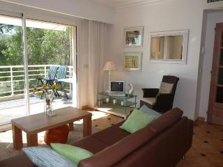 Viola- 2 Bedroom Vacation Rental with a Pool and Terrace, Cannes