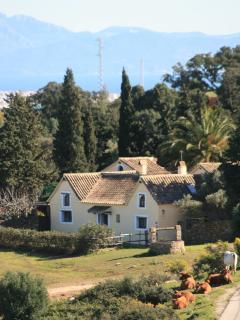 Casa Amarilla from countryside